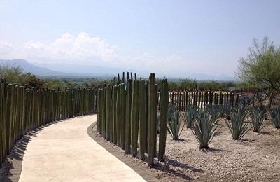 Jardín de Cactáceas