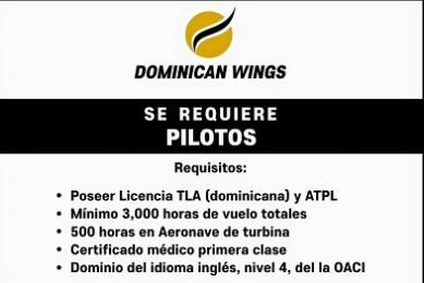 Dominican Wings