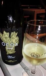 Ocoa Infotur Dominicano 3