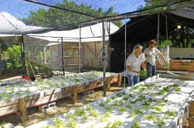 Fundacion Ecologica Puntacana 2